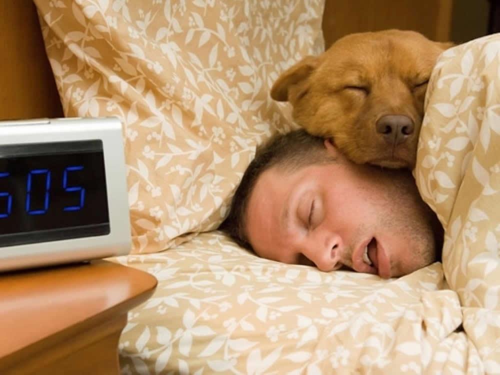 Для того, чтобы хорошо выспаться стоит впустить в спальню ваше любимое домашнее животное